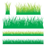 Vector grass Stock Photos