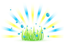 Vector grass background Stock Photos