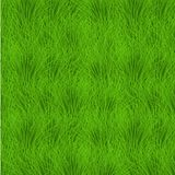 Vector grass background. eps10 Royalty Free Stock Photos