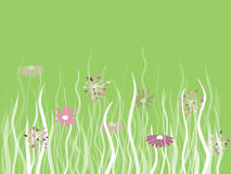 Vector grass with flowers on green Stock Photography