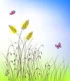 Vector grass and flowers silhouettes background Stock Photo