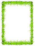Vector grass frame Stock Images