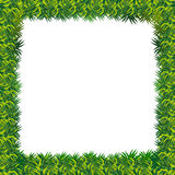 Vector grass frame presentation Royalty Free Stock Images