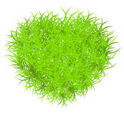 Vector grass heart Stock Images