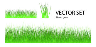 Vector grass set Royalty Free Stock Photography