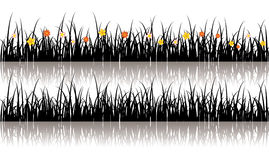 Vector grass silhouette Royalty Free Stock Images