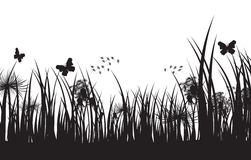 Vector grass silhouette background Stock Images