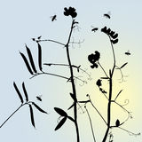 Vector grass silhouettes Stock Image