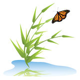 vector grass, water and butterfly Royalty Free Stock Images