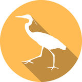 Vector Great white heron Royalty Free Stock Photo