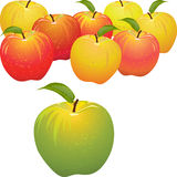 Vector Green apple vs set of red and yellow apples Stock Photography