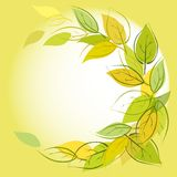 Vector green background with leaves Royalty Free Stock Image