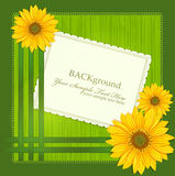 Vector green background, with Sunflowers royalty free illustration