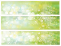 Vector green backgrounds. Vector lights, green, bokeh backgrounds royalty free illustration