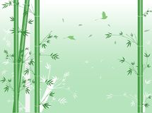 Vector green bamboo. Stock Image