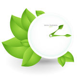Vector green clock Royalty Free Stock Images