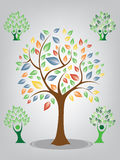 Vector Green and Colorful Tree on  white background Royalty Free Stock Photography