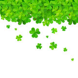 Vector green falling clovers on white background Royalty Free Stock Image