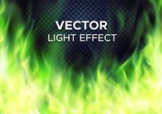 Vector green fire flames on transparent background Stock Photos
