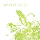 Vector. Green floral background royalty free illustration