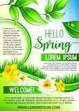 Vector green floral poster for Hello Spring design. Hello Spring vector poster for springtime holidays. Design of dew drops on green leaves, grass and blooming Stock Image