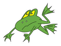 Vector green frog Royalty Free Stock Image