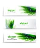 Vector green grass banners Stock Photo
