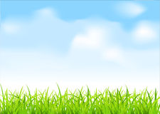 Vector green grass and blue sky Royalty Free Stock Image