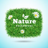 Vector green grass and flower, nature concept Royalty Free Stock Photography