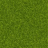 Vector green grass lawn seamless texture. Spring or summer nature background. Field or meadow realistic illustration. Vector green grass lawn seamless texture Royalty Free Stock Photography