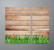 Vector green grass on wood background Royalty Free Stock Images