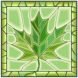 Vector green illustration of maple leaf from tree. Royalty Free Stock Photo