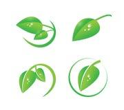 Vector green leaf with dew drops icon set, organic symbols, natural, environment, green logo set Royalty Free Stock Photos