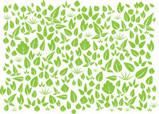 Vector green leafs Stock Images