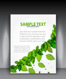 Vector green leaves brochure Stock Photos