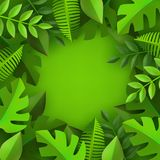 Vector green leaves frame background template. Abstract natural decoration pattern. Summer tropucal exotic jungle. Fern monstera paradise resort, holiday Royalty Free Stock Images