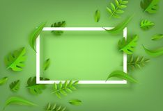 Vector green leaves frame background template. White rectangle. Abstract natural decoration pattern. Summer tropucal exotic jungle. Fern monstera paradise Royalty Free Stock Image