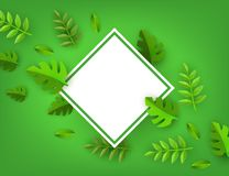 Vector green leaves frame background template. White rhombus. Abstract natural decoration pattern. Summer tropucal exotic jungle. Fern monstera paradise resort Royalty Free Stock Photo