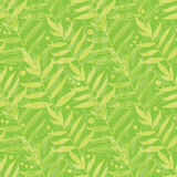 Vector green leaves seamless pattern background Royalty Free Stock Images