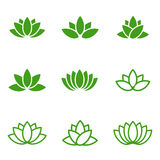 Vector green lotus icons set on white background. Stock Photo
