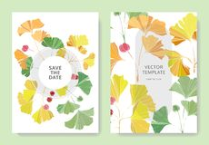 Vector. Ginkgo leaf. Wedding white background card. Thank you, rsvp, invitation elegant card illustration graphic. Vector. Green, orange and yellow ginkgo leaf stock illustration