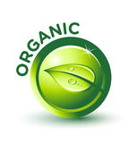 Vector Green ORGANIC Label Royalty Free Stock Image
