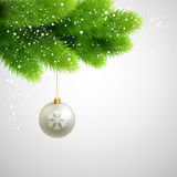 Vector Green Pine branches with white ball Stock Photo