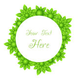 Vector green rounded flower frame. Vector green rounded frame containing many little flowers Stock Photos
