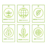 Vector green set of labels in linear style for organic products, food and cosmetics. Rectangular elements for logos, badges, stickers or icons. Natural royalty free illustration
