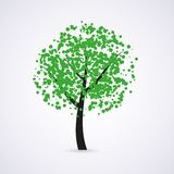 Vector green tree Stock Images