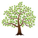 Vector green tree Stock Photos