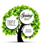 Vector green trees Stock Images