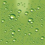 Vector green water bubbles. Detailed water bubbles on glass surface Royalty Free Stock Images