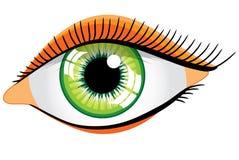 Vector green woman's eye Stock Image